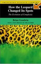 How the Leopard Changed its Spots - Evolution of Complexity
